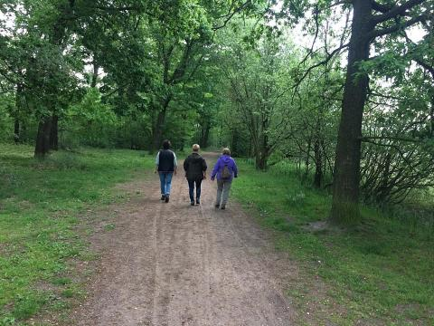 Wandelcoaching en Meditatie